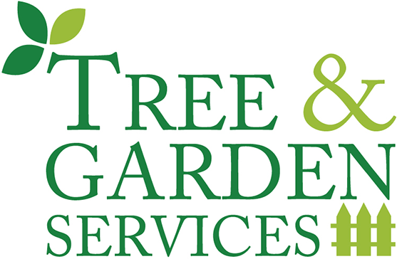 Tree and Landscaping Services