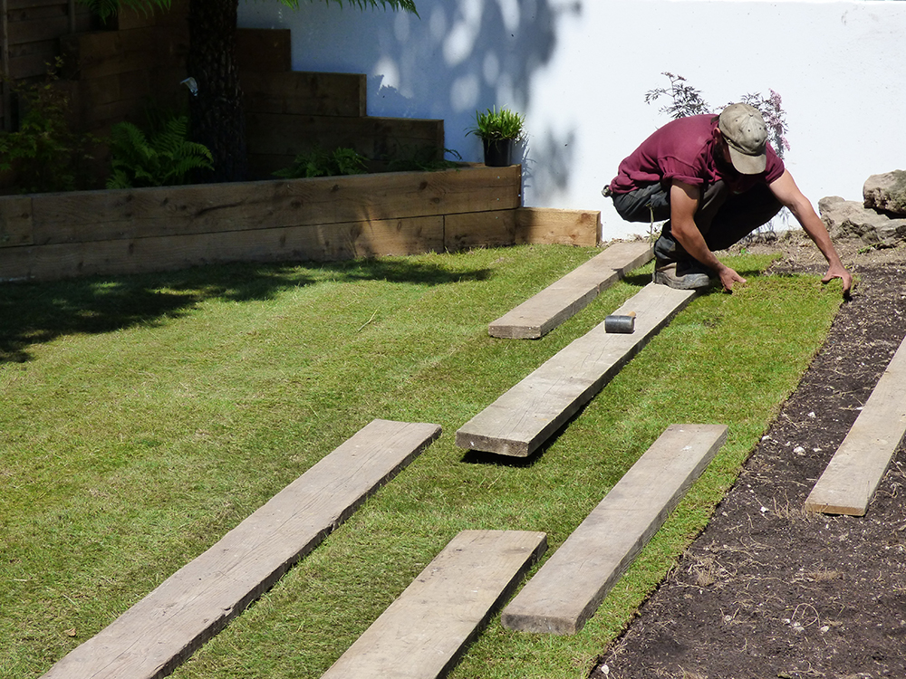 New turff lawn being laid in Brighton by Tree and Garden Services